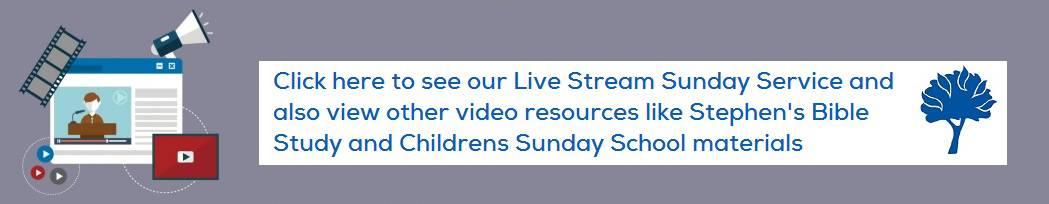 Live Stream Link